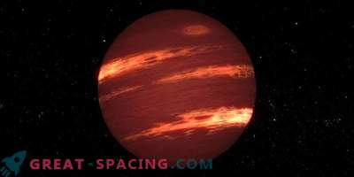Giant flashes on a young brown dwarf