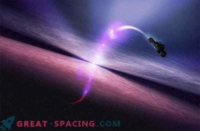 Neverjetne črvine: skozi čas in prostor
